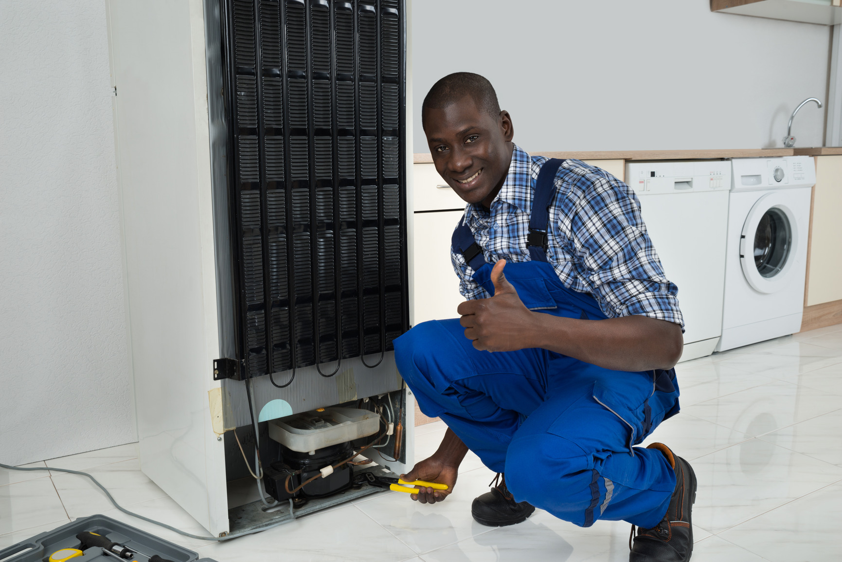 The Reason To Call Appliance Repair Service Professional